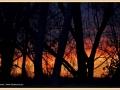 zonsondergang_8601_il-tramonto