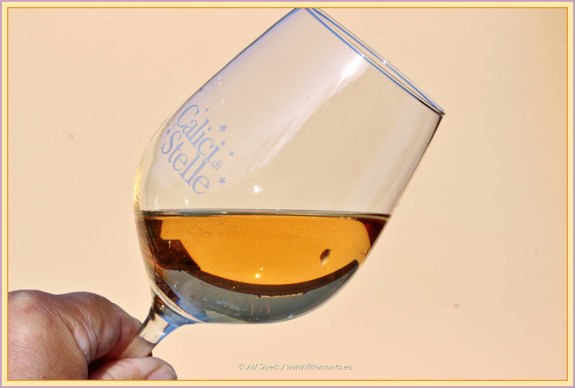 witte-wijn_8346_il-tramont